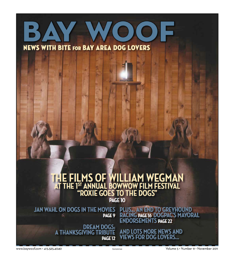 Articles - Bay Woof Magazine