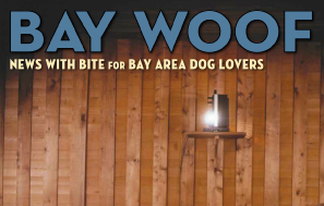 Bay Woof Magazine
